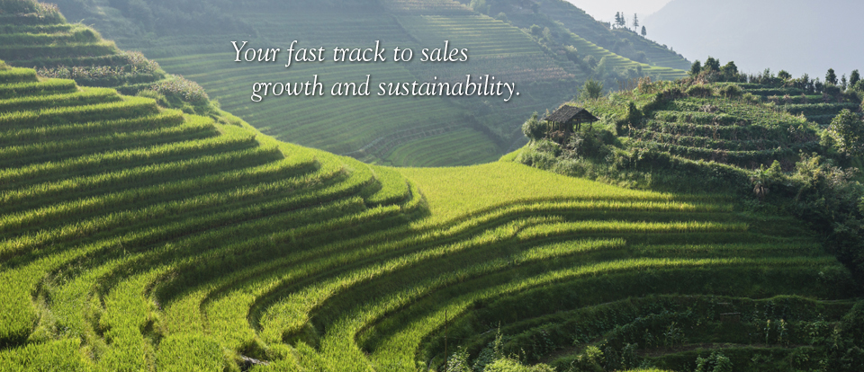 Your fast track to sales growth and sustainability.
